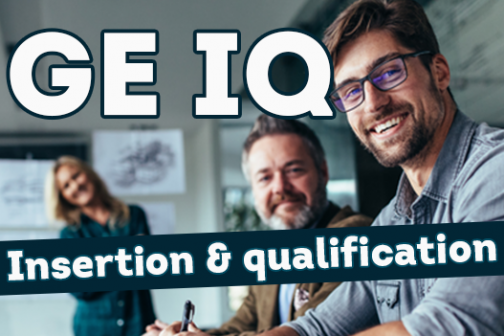 GEIQ Insertion et Qualification